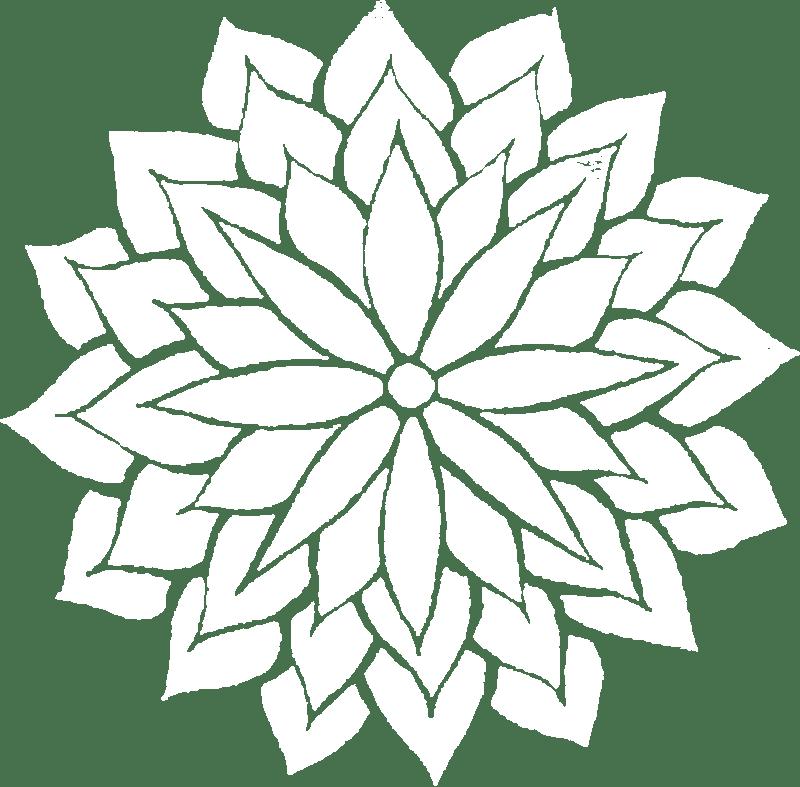Australian Bush Flower Essence
